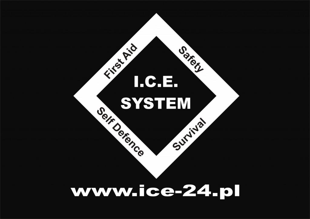 logo ICE SYSTEM